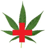 image-mj leaf and red cross